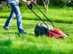 Zu den umlegebaren Nebenkosten zählt auch die Gartenpflege.